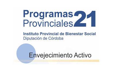 TALLER DE MANUALIDADES | Participación social del mayor.